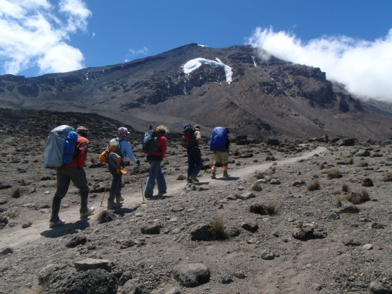 Ascension du Kilimandjaro : comparatif des prix
